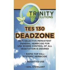 TES 130 Deadzone